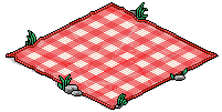 Red Picnic Blanket.png