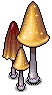 Mayflower Mushrooms.png