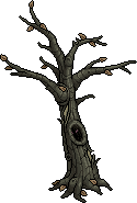 Skeletal Oak.png